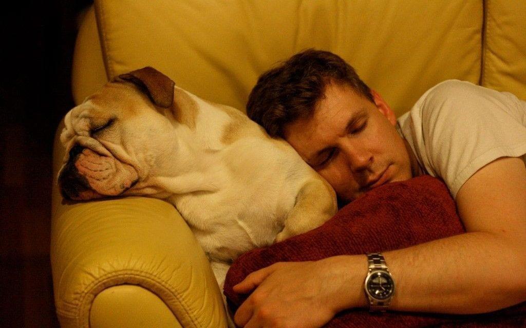 Privarea de somn – cum ne imbolnavim grav fara sa ne dam seama