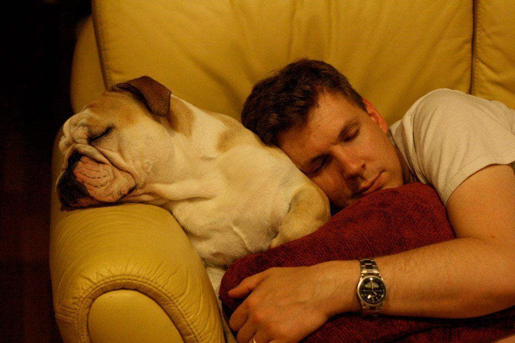 Privarea de somn - cum ne imbolnavim grav fara sa ne dam seama